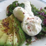 santa barbara  poached eggs