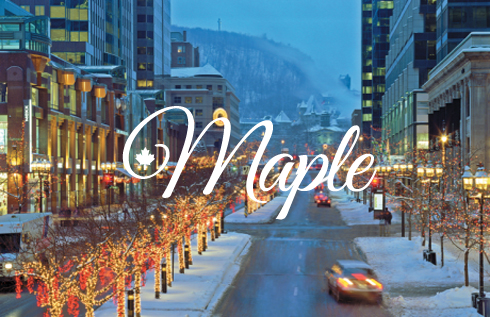 Montreal_winter_Maple_1