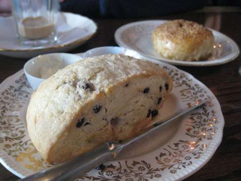 cardinal tea room scone